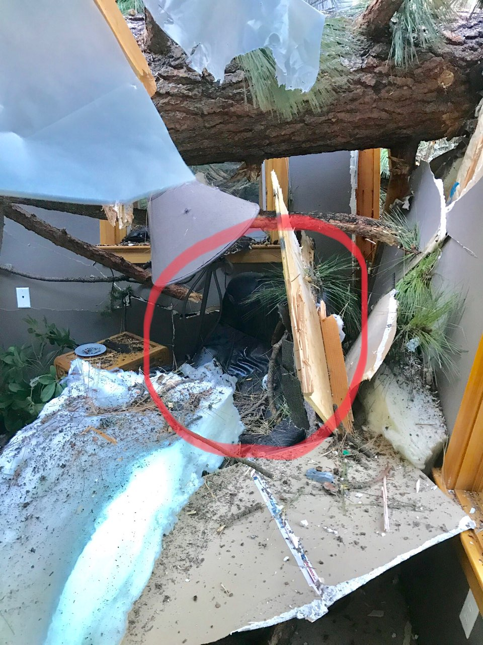 Battalion Chief Kelly Burns circled the arm chair in the photo that resident Brian Gorham said he was on his way to sit in when the tree fell directly on top of it. Photo courtesy of Kelly Burns