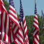 Flags stand proudly in Floral Haven with memories of the fallen