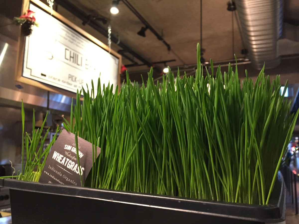 Assembly Juice features wheatgrass shots and some of their juices have wheatgrass as one of the ingredients. (Image: Frank Guanco)