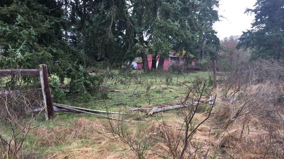 Authorities: Man in search of 'better dope' crashes stolen semi through JBLM fence