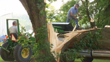 Residents cleaning up after storms roll through CNY