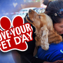 See it, Send it: National Love Your Pet Day 2018