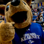 UNK to offer in-state tuition to Kansas & Colorado students