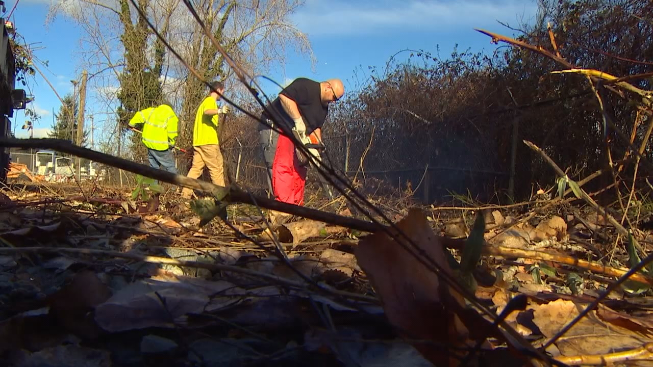 City workers begin to clear a site that will be one of three sactioned homeless encampments around Seattle (Photo: KOMO News)