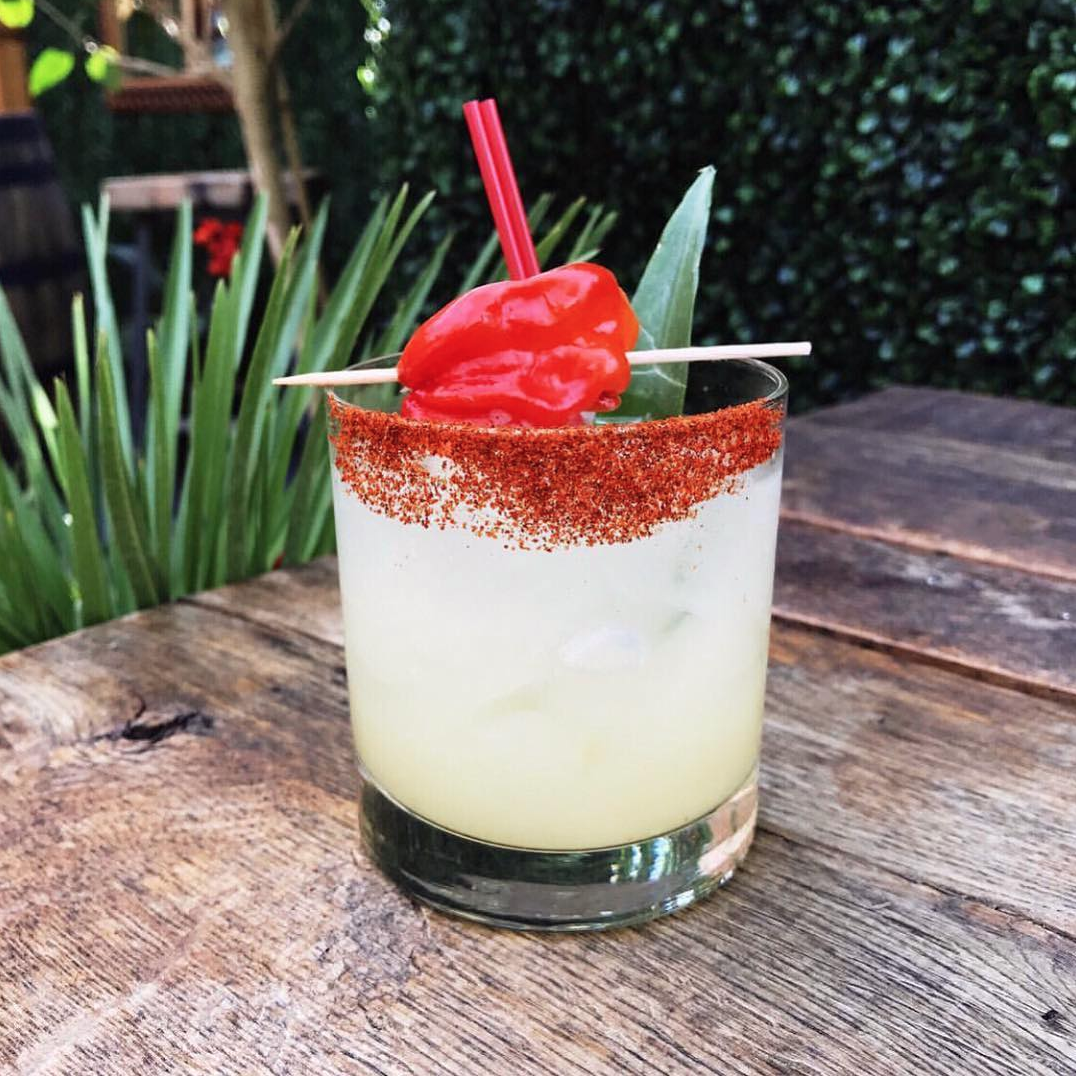 It's not just food porn, there's plenty of drink porn as well, like this concoction from El Techo. (Image via @eltechodc)
