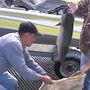 Coos Basin Salmon Derby helps fund fish enhancement & education projects