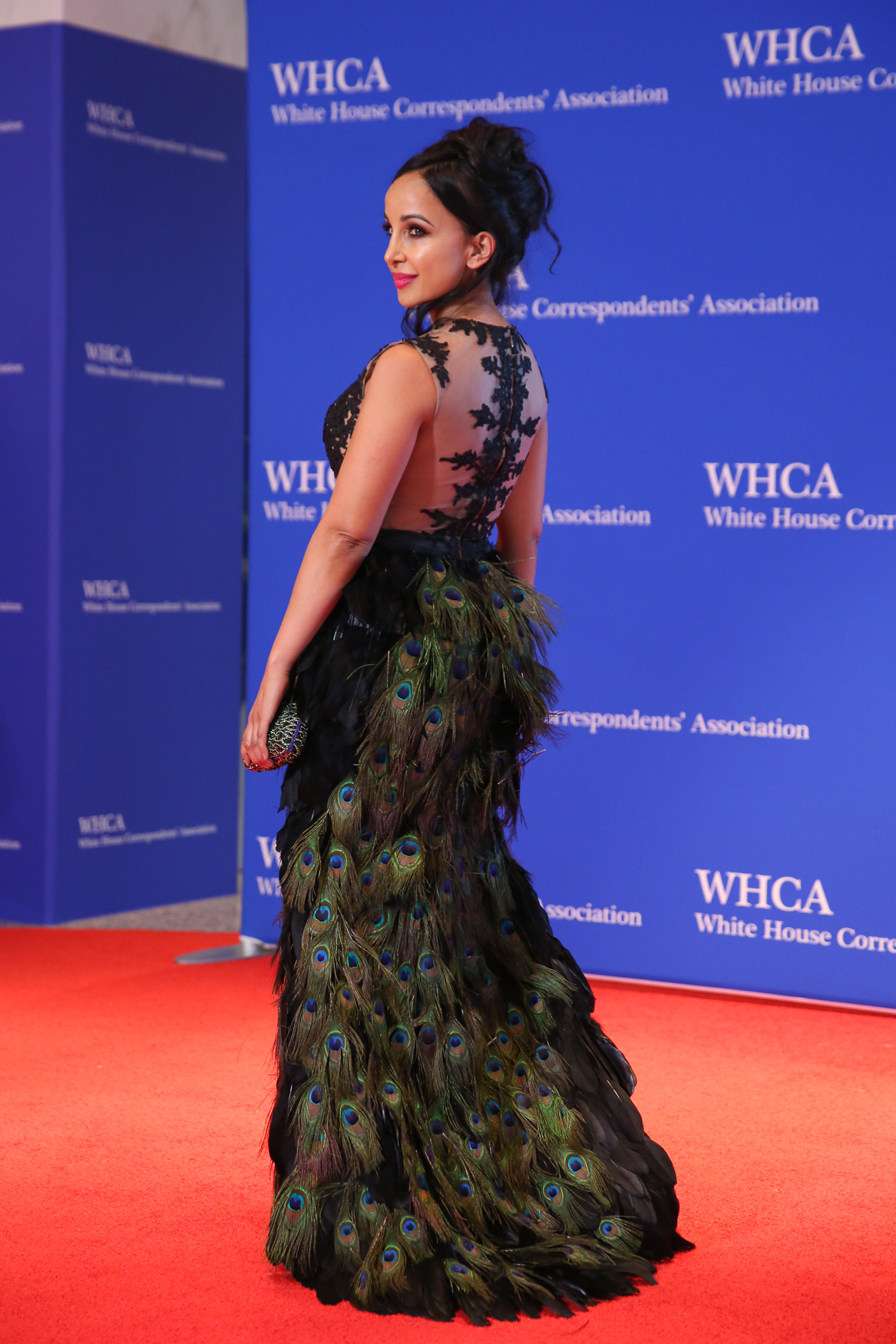 Now onto the dresses! With the general changes in the WHCD since President Trump took office, the looks have generally been more lowkey, but this dress was something of an exception.{ }(Amanda Andrade-Rhoades/DC Refined)