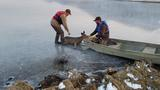 Young buck rescued from ice on frozen Oregon lake
