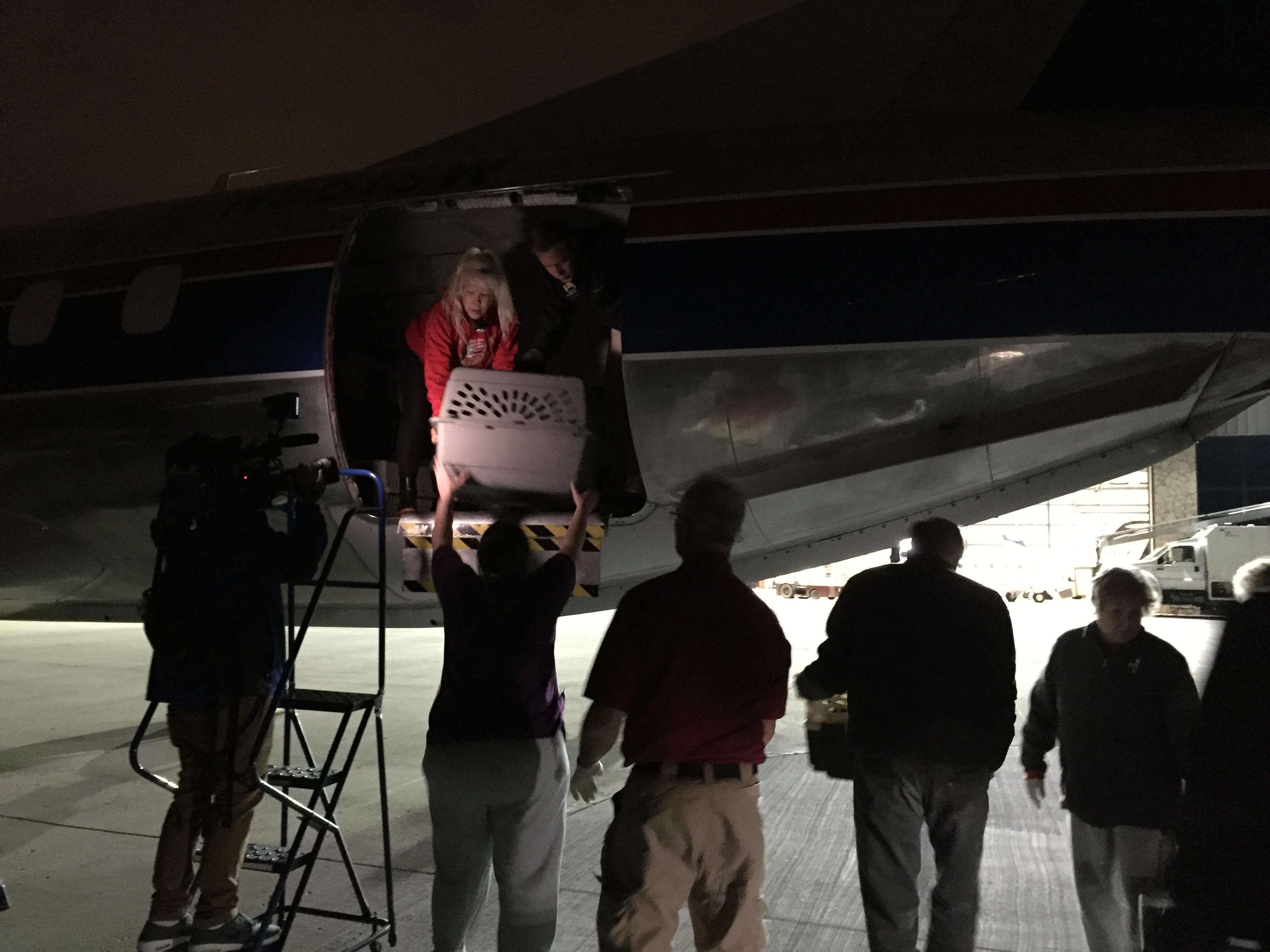 Unloading the plane in Wisconsin. (Photo courtesy of Cari Tetzlaff)