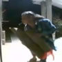 Woman caught on camera stealing Christmas decoration from porch in West Mobile