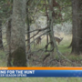 Firearm Deer Season opens in West Michigan