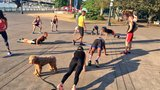 Free fitness movement celebrates one year in Portland, encourages others to join