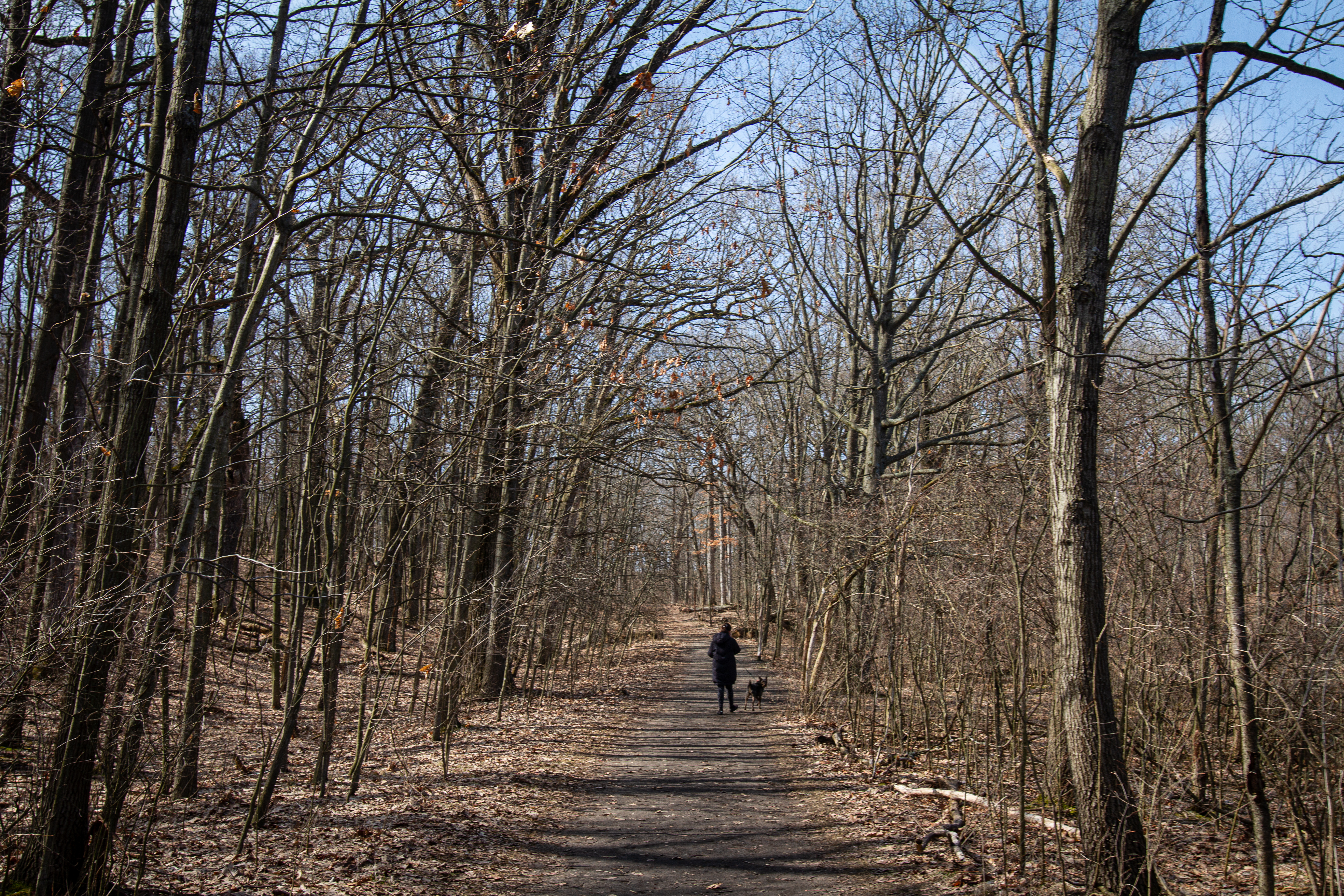 A Kalamazoo resident walks her dog at Aslyum Lake Preserve on Wednesday, March 25. (WWMT/Sarah White)