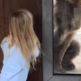 Peek-a-bear: Video shows South Carolina girl playing game with grizzly bear