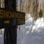 Forever Wild: Environmental group challenges new Adirondack snowmobile trails