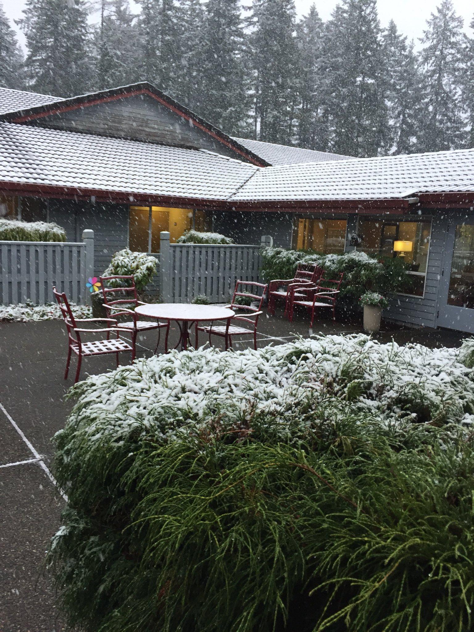 photos snow on halloween week komo