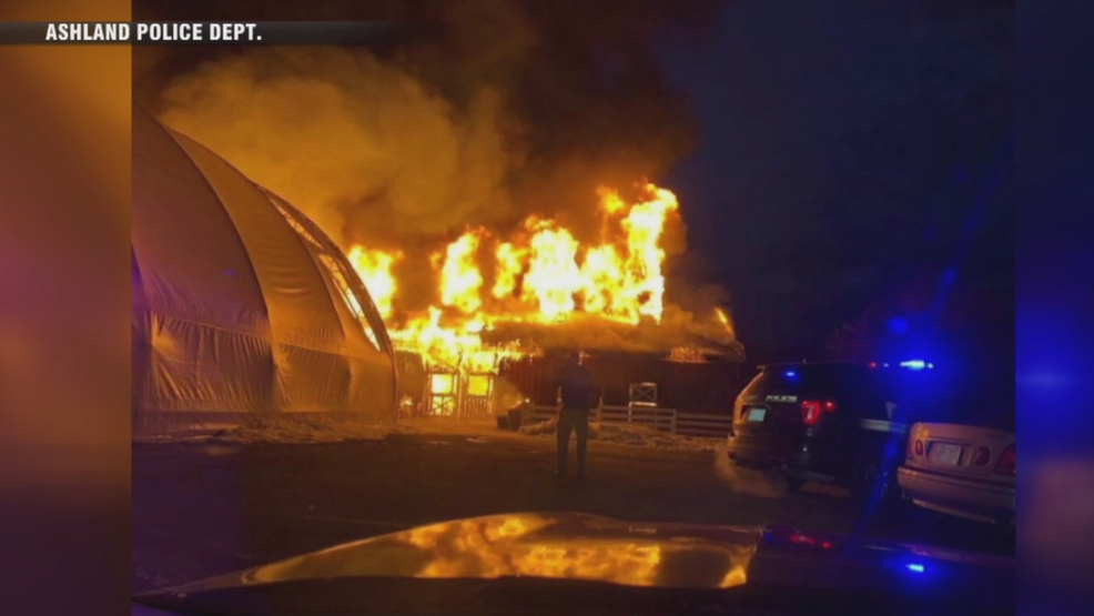 Nearly 50 animals killed in barn fire