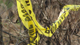 Homicide Investigation in Lycoming County