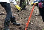 180312 Cobb School students replant trees at Horse Prairie Fire site 1.jpg
