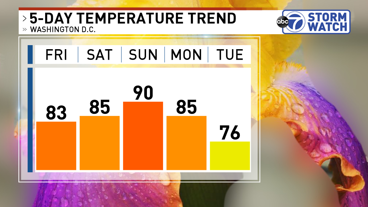 5 Day Temperature Trend