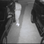 Kalamazoo police warn residents to lock vehicle doors after a rash of break-ins