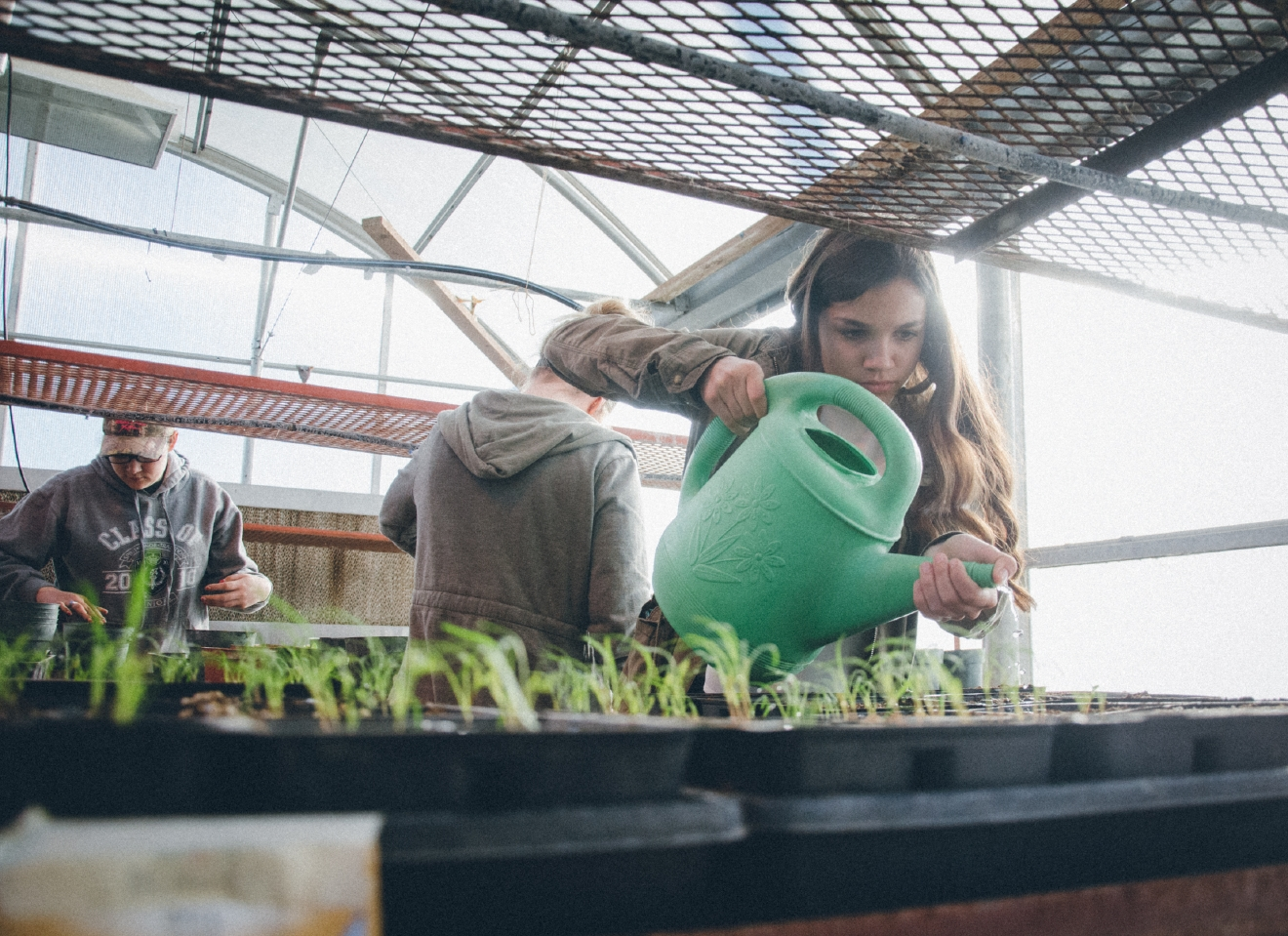 Zillah High School students tend plants in the school's onsite greenhouse. Photo Credit: Danny Gross
