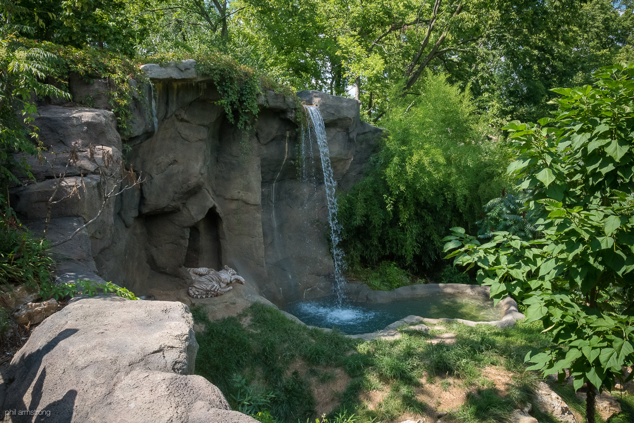 Have you been to the Cincinnati Zoo and Botanical Garden lately? In addition to the mega-popular Hippo Cove with darling Fiona, the zoo has many exhibits with a wide range of birds, mammals, reptiles, and more. It's remained one of the exotic treasures of the Queen City for over 140 years. / Image: Phil Armstrong, Cincinnati Refined // Published: 8.25.17