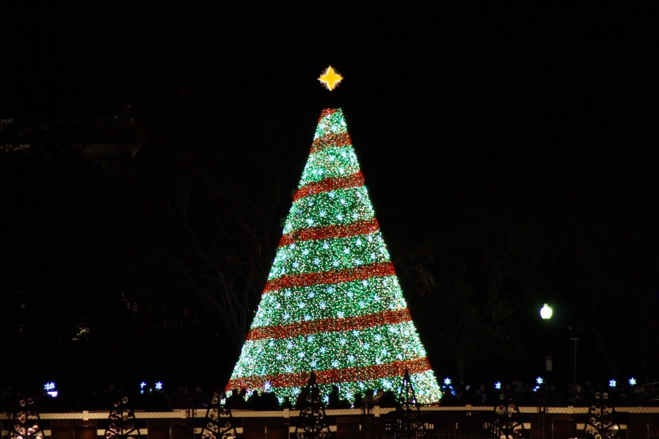 National Christmas Tree Lighting Ceremony (NPS.org){&amp;nbsp;}<p></p>