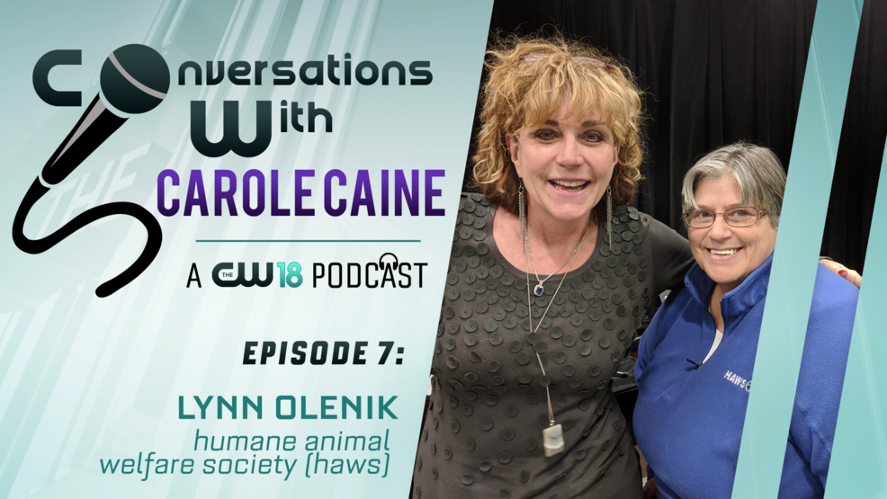 Conversations with Carole Caine | Episode 7: HAWS