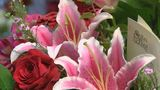 Floral Frenzy: local florist shares a behind-the-scenes look on Valentine's Day