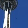 Watch: Man spotted rappelling off Space Needle