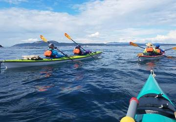 Paddles Up! Here are the absolute best places to kayak
