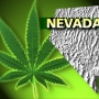 Marijuana social clubs could become reality in Nevada
