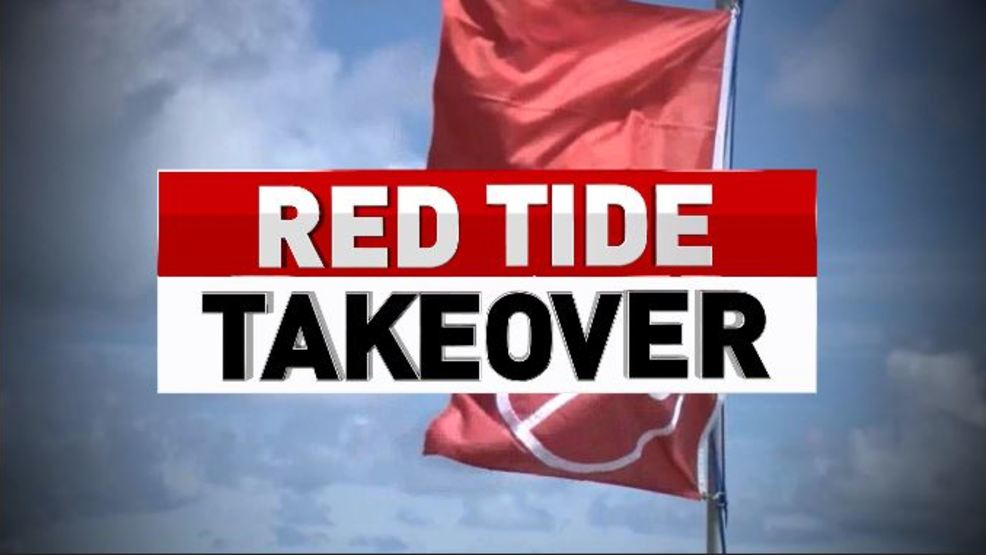 Red Tide To Remain In South Florida Through Friday Wtvx
