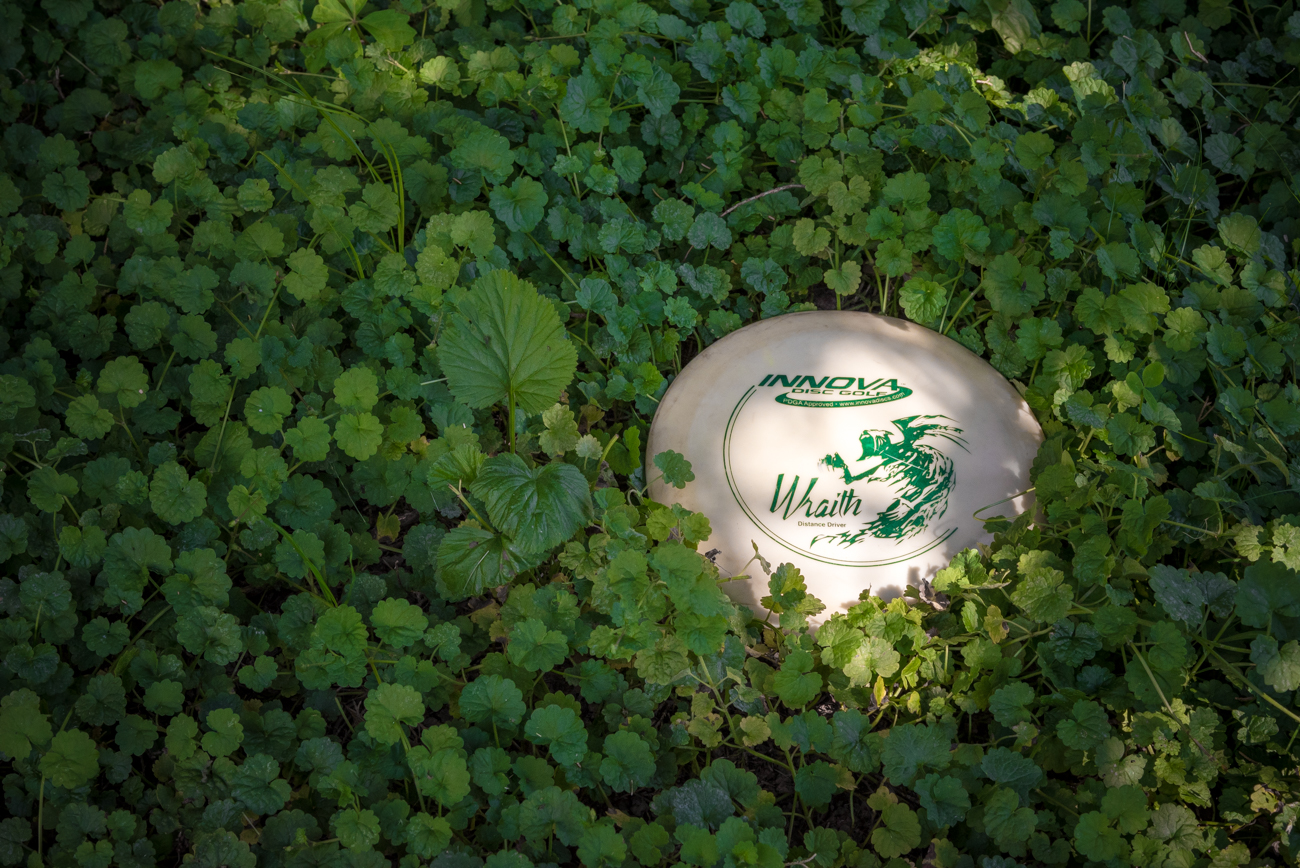Depending on their skill level, players will inevitably have to search for their disc should they throw it into the neighboring wooded areas surrounding the course. / Image: Phil Armstrong, Cincinnati Refined // Published: 6.8.17