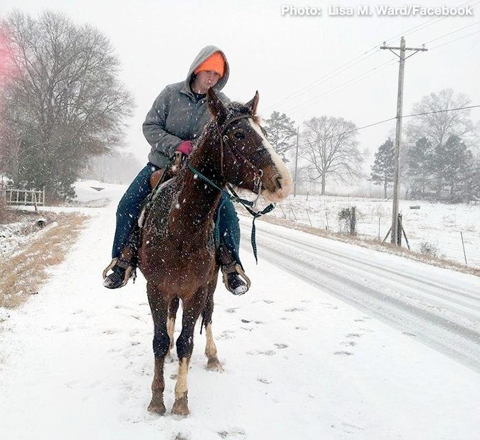 A young man rides his horse down the street near Pell City, Ala. during a winter storm, Tuesday, January 28, 2014.