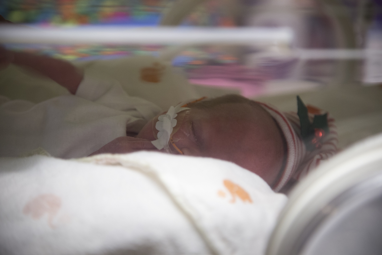 Camille Baudinet, one of a set of quintuplets recently born, rests at the St. Joseph's Nursery Intensive Care Unit, Wednesday, Dec, 21, 2016, in Phoenix. Margaret Baudinet gave birth on Dec. 4 to four girls and one boy. The quintuplets remain in an intensive care unit but have been taken off ventilators, can now breathe on their own and are being bottle-fed. (Mark Henle/The Arizona Republic via AP)