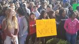 Thousands of middle Tennessee students protest gun violence on National Walkout Day