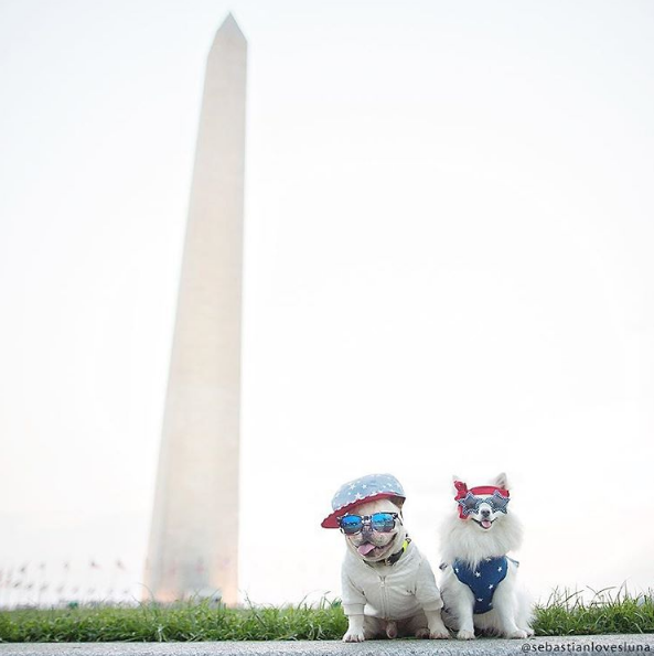IMAGE: IG user @sebastianlovesluna / POST: Peace - Love - Unity. Happy 4th! ???? #mydccool #happyfourthofjuly