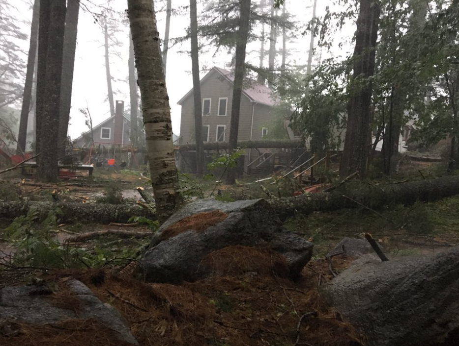 Down trees on Highland road in Bridgton after today's storms (WGME)