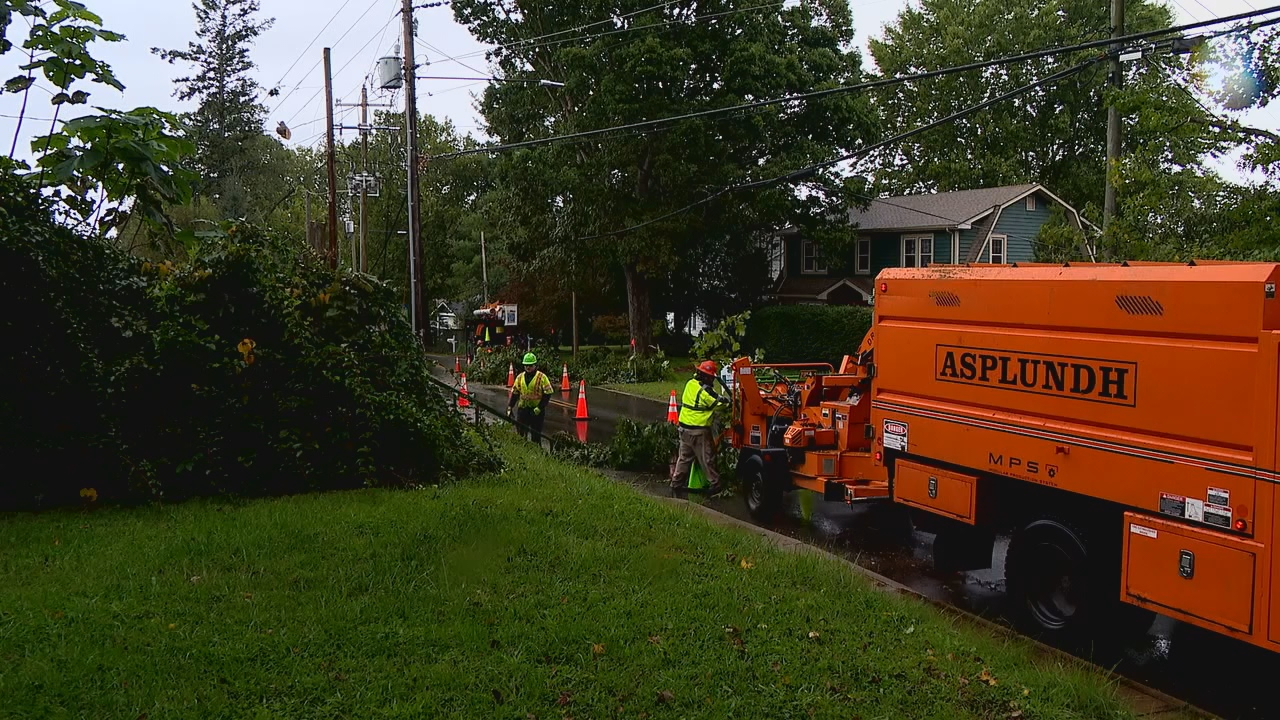 Lilly Oliver, who lives on Fairview Road, said crews showed up Monday and cut away half a tree in her yard along with other large branches in neighboring yards. (Photo credit: WLOS staff)