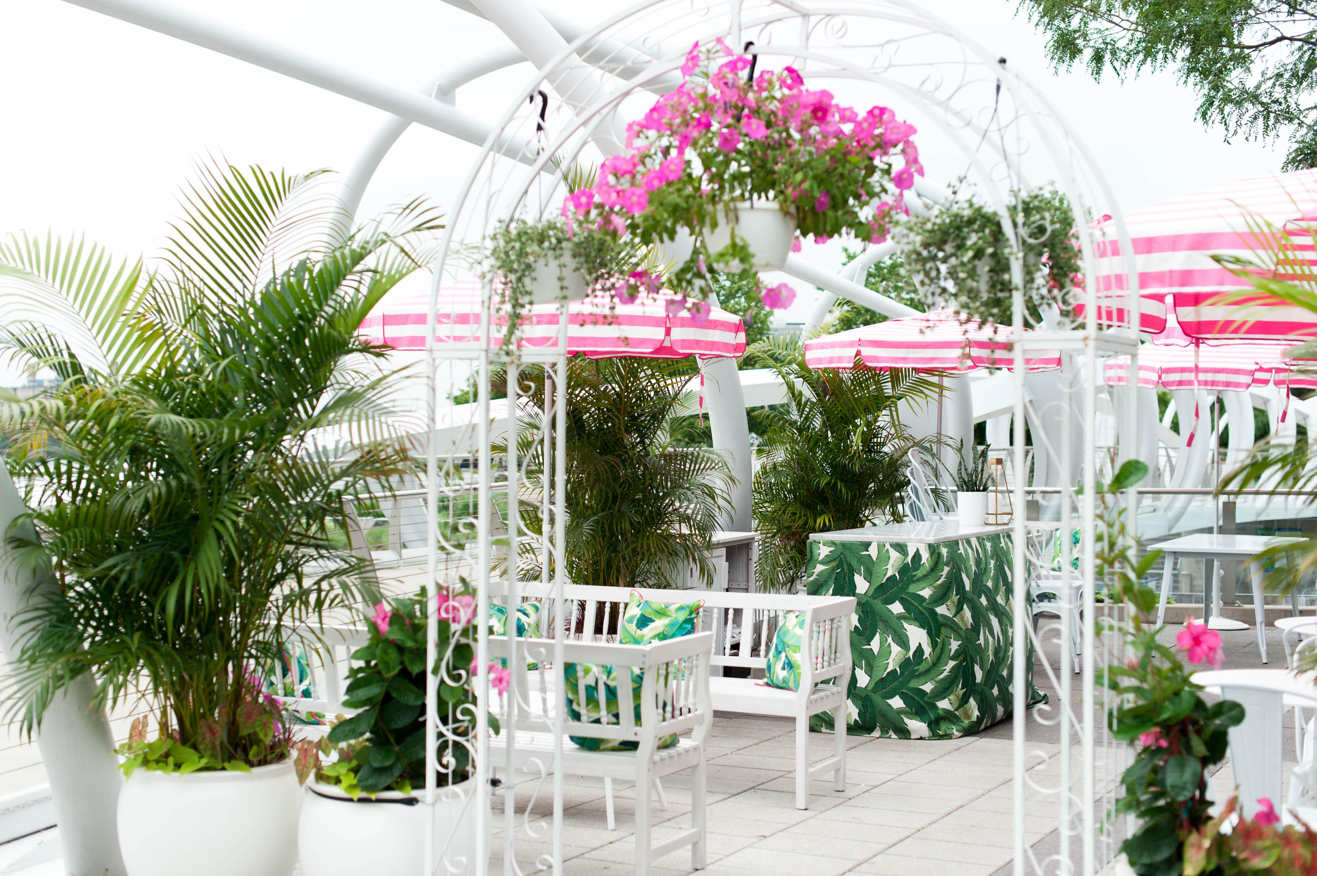 whaley's new rosé garden is the spot to #drinkpink all season long