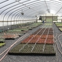 Nursery industry top leader in agriculture production