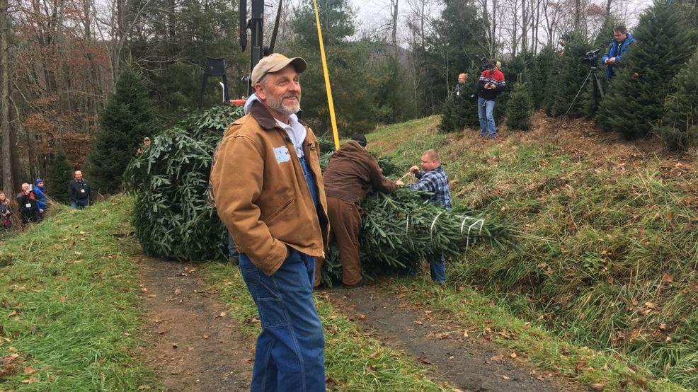 farmer likens white house christmas tree pick to super bowl win wlos