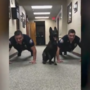 Alabama police dog does push-ups with officers